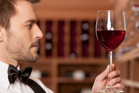 Confident sommelier  Side view of confident young sommelier holding a wine glass and examining it photo