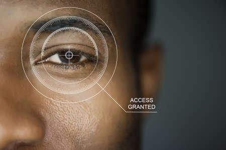 lock  futuristic: Scansione per la sicurezza o l'identificazione. Occhi con scanner e l'interfaccia del computer Archivio Fotografico