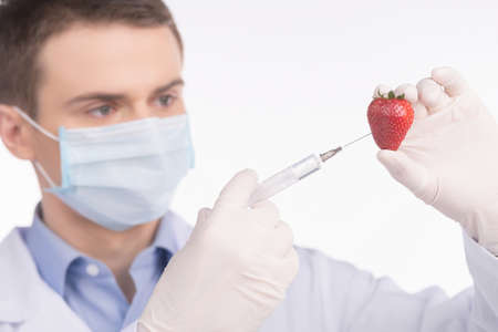 gen: Genetic food engineering concept with fresh red strawberry. man holding strawberry and giving injection  Stock Photo