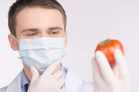 man holding tomato and wearing mask. Cell culture assay to test genetically modified vegetable photo