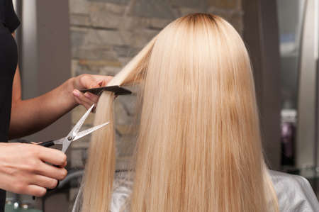 horizontal haircut: Back view of woman getting new haircut by hairdresser at parlor. hairdresser cutting clients hair in beauty salon