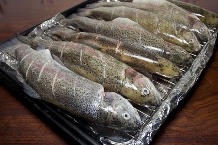 Tray of prepared fish ready for grilling