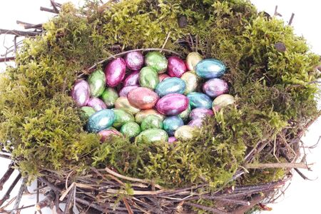 Easter eggs  in bird nest closeup photo