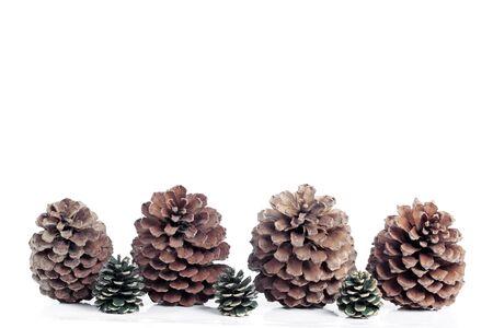 pinecones: Pinecones background isolated over white