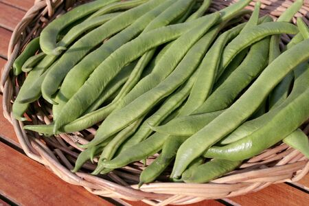 green bean: Runner beans on willow basket