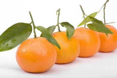 Row of tangerines closeup isolated on white Stock Photo - 6310387