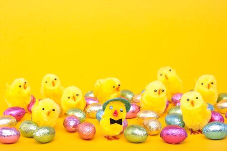 chicks: Easter eggs and  over yellow background