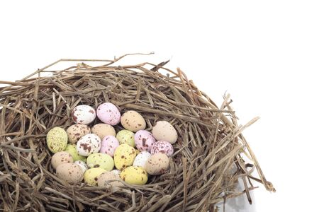 Colored  eggs in bird nest over white background Stock Photo - 8414779