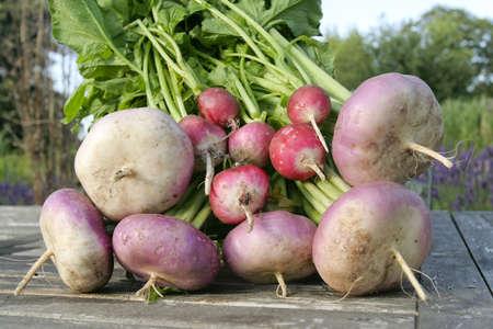 root vegetables: Appena scavato radice verdure closeup Archivio Fotografico
