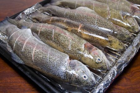 Prepared trout om baking tray photo