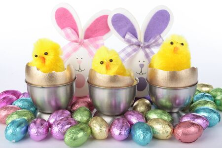 chicks: Easter chicks decorations with eggs