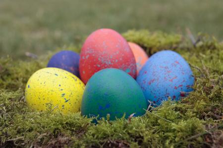 pollitos: Polluelos de Pascua decoraciones con huevos Foto de archivo