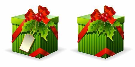 xmas decoration: Vector Christmas gift