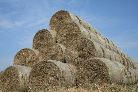 Many Bales of Straw Stock Photo