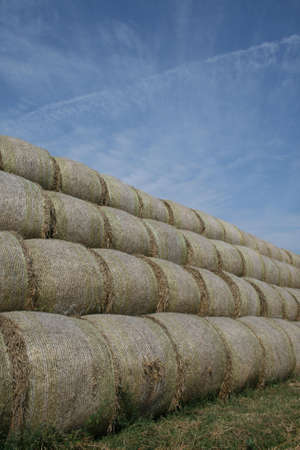 Bales of straw Stock Photo - 5582798