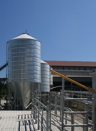 Latticini agricola silo di grano e penne