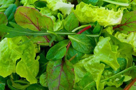 Close up image of mixed salad greens