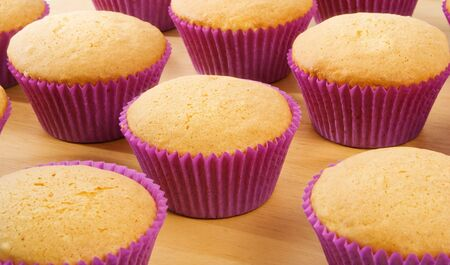 Freshly baked Cup Cakes photo