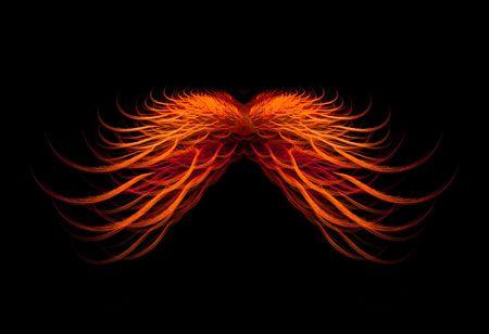 Beautiful orange wings isolated over black background. Stock Photo