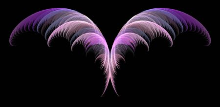Delicate abstract fairy wings over black background.
