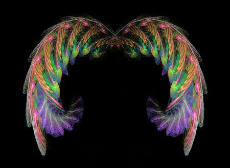 Beautiful delicate fantasy wings in irredescent colors over a black background.