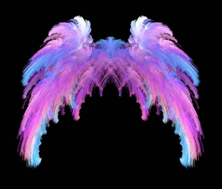 Pretty pink, blue and white feathery wings over black background.