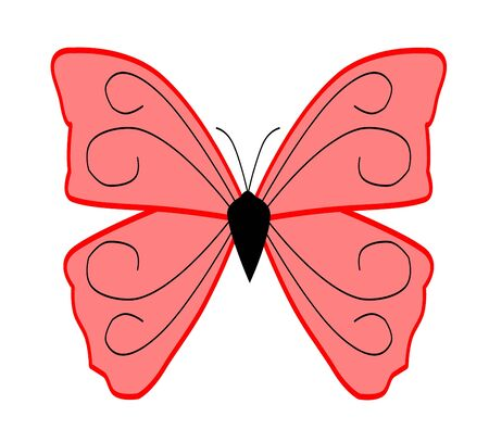 Illustration of a Butterfly over white background