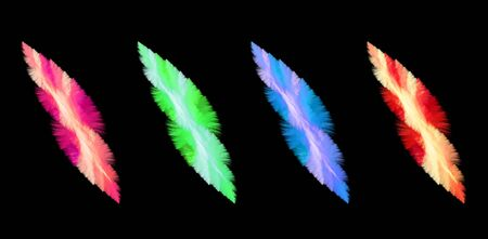 Four feathery abstract elements in different colors over black background