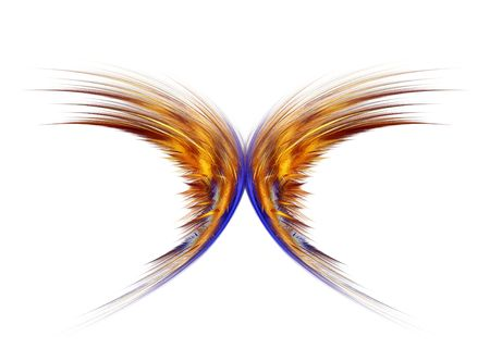 Beautiful golden butterfly abstract over white background