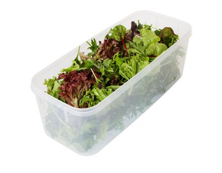 Fresh mixed salad leaves in a plastic storage container