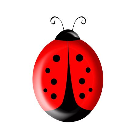 Cute illustration of a red and black ladybird isolated over white background