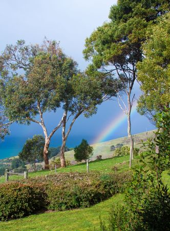 View of a rainbow over rolling green hills and ocean at Wongarra, Great Ocean Road, Victoria, Australia