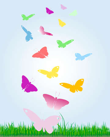 funding: colorful butterflies