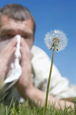 hay fever Stock Photo - 5191440