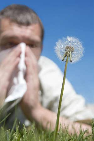 allergies: hay fever