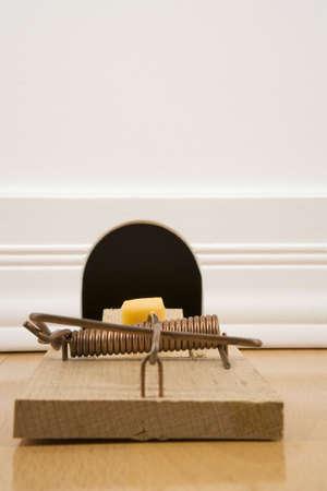 mousetrap: Trappola per topi di fronte a una tana di topo