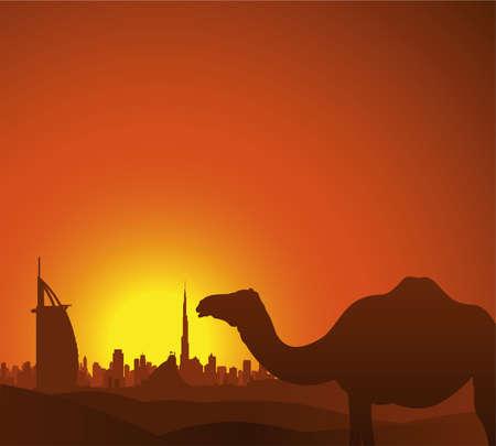 dromedaries: dubai skyline