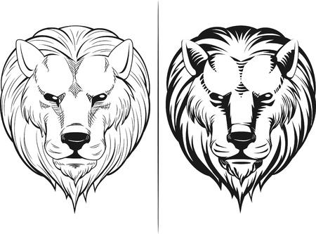 dominance: Boceto de la cabeza del le�n