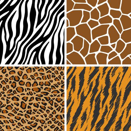 zebra skin: Animal Set - Giraffe, Leopard, Tiger, Zebra Seamless Pattern Illustration