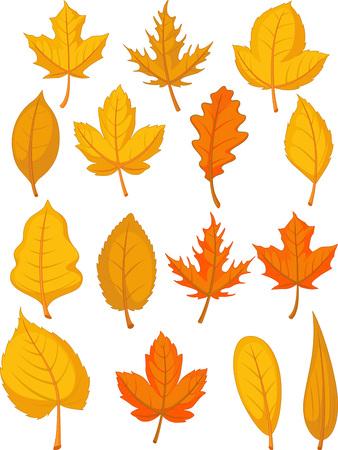 elm: Leaves Set - Red Autumn Leaves Illustration