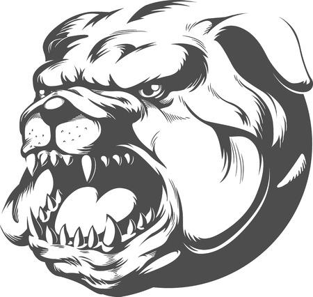 perro furioso: Bull Dog Vector Silueta