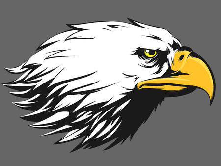 Eagle Gezicht Vector - Side View Cartoon Stock Illustratie