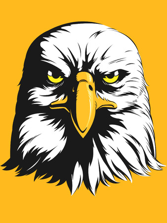 high school sports: Eagle Head Vector - Front View Cartoon