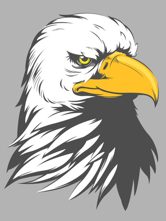 eagle: Bald Eagle Head Cartoon