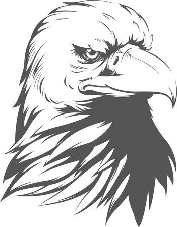 adler silhouette: Weißkopfseeadler-Schattenbild Illustration