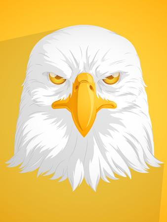 aguila calva: Águila calva vectorial