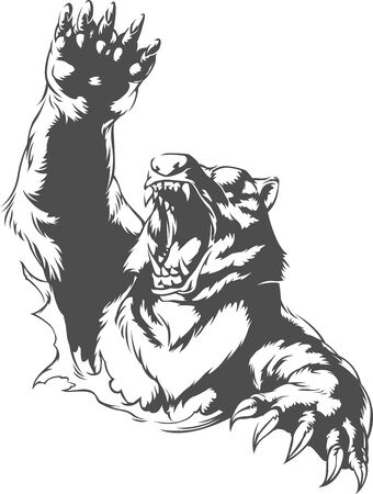 Silhouette angry bear attacking roaring isolated swinging arm mauling on black-and-white no background vector illustration Çizim
