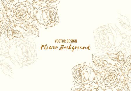 Background Hand Drawn Rose Flower Floral Sketch