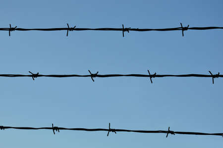 barbed wire  Price: $6.00  Available Formats JPEG - 4288 x 2848 pixels Description Silhouette of barbed wire against a bright blue sky Stock Photo - 8137366