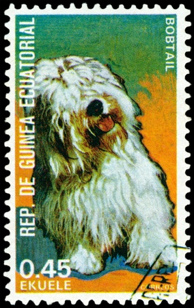EQUATORIAL GUINEA - CIRCA 1974: A stamp printed by  EQUATORIAL GUINEA shows dog Bobtail, series, circa 1974 Stock Photo